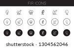 fir icons set. collection of... | Shutterstock .eps vector #1304562046