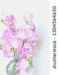sweet pea flower | Shutterstock . vector #1304564650