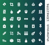 seed icon set. collection of 36 ... | Shutterstock .eps vector #1304615596