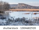 Frozen waters and reed beds of Silverdale Moss with Middlebarrow Hill in distance
