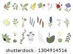 set of flowers  leaves and... | Shutterstock .eps vector #1304914516