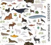tundra biome. terrestrial... | Shutterstock .eps vector #1305053929