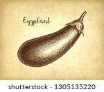 ink sketch of eggplant on old... | Shutterstock .eps vector #1305135220