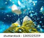 man swimming underwater in pool ...   Shutterstock . vector #1305225259