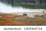Geyser basin with hot thermal springs and steam vents at Yellowstone National Park in Wyoming