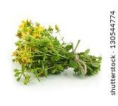 Yellow Flowers Of Hypericum...