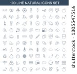 natural icons. trendy 100... | Shutterstock .eps vector #1305547516