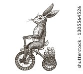 hand drawn bunny riding... | Shutterstock .eps vector #1305564526