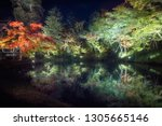 trees mirrored in the water at... | Shutterstock . vector #1305665146