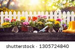 garden flowers  plants and... | Shutterstock . vector #1305724840