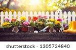 garden flowers  plants and... | Shutterstock . vector #1305724840