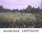 empty countryside landscape in... | Shutterstock . vector #1305744199