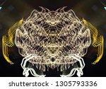abstract symmetrical... | Shutterstock . vector #1305793336