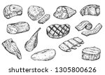 set of hand drawn sketch meat... | Shutterstock .eps vector #1305800626
