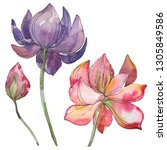 pink and purple lotus foral... | Shutterstock . vector #1305849586