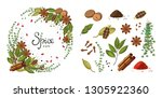 Vector Set Of Various Spices In ...