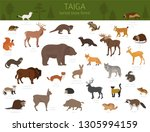 Stock vector taiga biome boreal snow forest terrestrial ecosystem world map animals birds fish and plants 1305994159