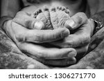 baby's feet in daddy's hands | Shutterstock . vector #1306271770