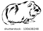 guinea pig sitting on bottom... | Shutterstock .eps vector #130638248