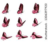 The Pink Butterfly Is Flying....