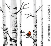 Bird Of Birches  Vector Drawing ...