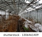 abandoned and neglected...   Shutterstock . vector #1306461409