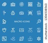 editable 22 macro icons for web ... | Shutterstock .eps vector #1306538563