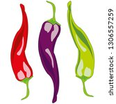 vector illustration of the... | Shutterstock .eps vector #1306557259