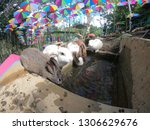 rabbit drinking on the pond | Shutterstock . vector #1306629676