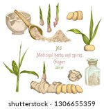 set colorful hand drawn of...   Shutterstock .eps vector #1306655359