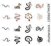 vector design of mammal and...   Shutterstock .eps vector #1306674439