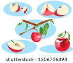 apple in different portions.... | Shutterstock .eps vector #1306726393