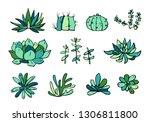 succulent plants colorful set....   Shutterstock .eps vector #1306811800