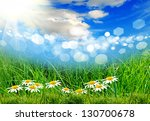 green grass on the summer field | Shutterstock . vector #130700678