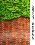 Bricks and Ivy - Hedera - stock photo