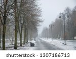 spring thaw in the foggy park ... | Shutterstock . vector #1307186713