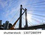 tokyo  japan. 2018 oct 24th....   Shutterstock . vector #1307288599