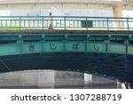 tokyo  japan. 2018 oct 24th....   Shutterstock . vector #1307288719