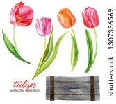 Tulips In A Wooden Box ...