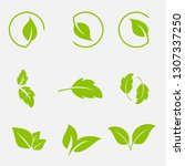 vector collection with green... | Shutterstock .eps vector #1307337250