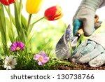 planting flowers in a garden | Shutterstock . vector #130738766