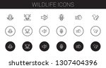 wildlife icons set. collection... | Shutterstock .eps vector #1307404396