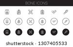 bone icons set. collection of... | Shutterstock .eps vector #1307405533