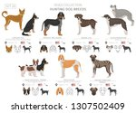 hunting dogs collection... | Shutterstock .eps vector #1307502409