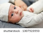 newborn baby is riding on a mom'... | Shutterstock . vector #1307523553