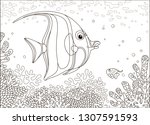 Funny Butterfly Fish Swimming...
