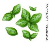 set of green basil leaves. 3d... | Shutterstock .eps vector #1307626729