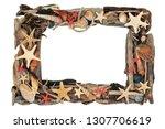 seashell and driftwood frame...   Shutterstock . vector #1307706619