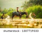 Asia Children On River Buffalo...