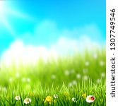 spring background. grass with... | Shutterstock .eps vector #1307749546